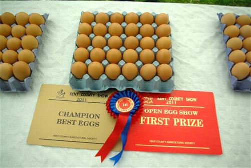 Reserve Best Eggs went to David Vicente from Lewisham