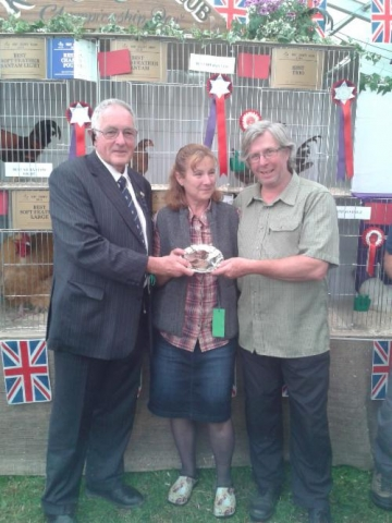 CHRISTINE & SIMON FULLER | BEST HARD FEATHER BANTAM  AND  BEST TRIO