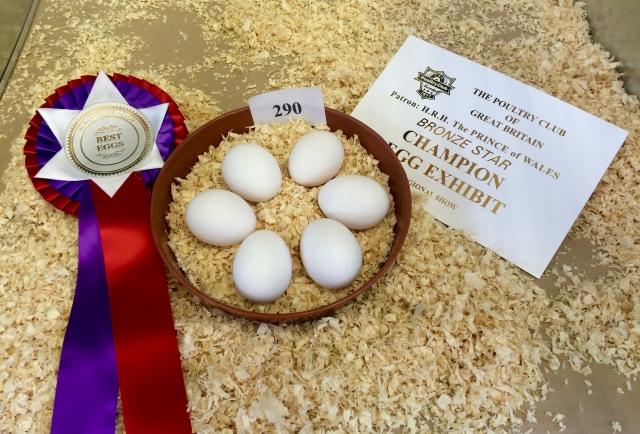 Best Eggs : C & S Fuller